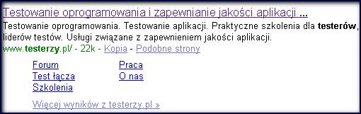 Rozszerzony opis testerzy.pl w Google